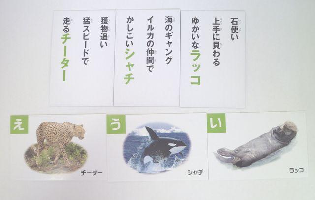 画像:動物図鑑カルタ3(100円ショップ・キャンドゥ)